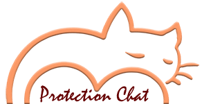 Boutique Protection Chat